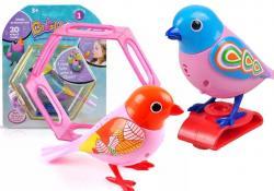 Kolorowy Interaktywny Ptaszek w Klatce Śpiewa