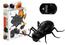 Wielka Mrówka Insekt Zdalnie Sterowany R/C Czarny