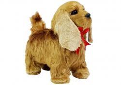 Pies Cocker Spaniel Porusza się, Szczeka
